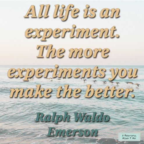 Ralph Waldo Emerson Life Quote