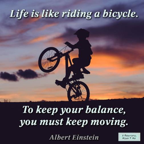 Albert Einstein Life Quote